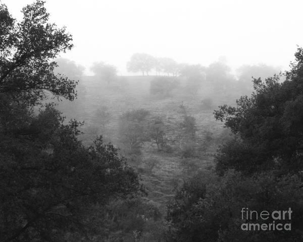 Photograph - Fog On A California Hill Photograph by Kristen Fox