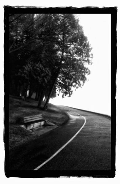 Pyrography - Foggy Day V-4 by Mauro Celotti
