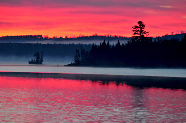 Photograph - Foggy Fall Sunrise On Low's Lake by Peter DeFina