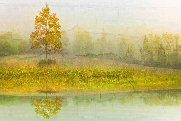 Photograph - Foggy Meadow by Debra and Dave Vanderlaan