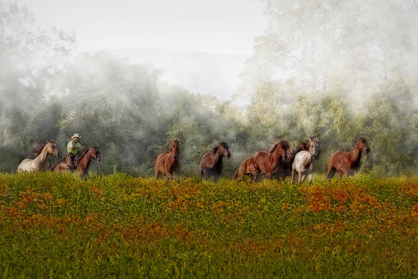 Photograph - Foggy Morning by Susan Candelario