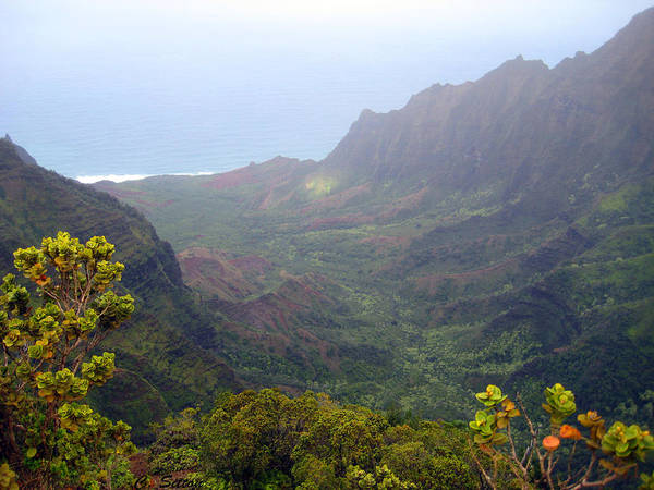 Photograph - Foggy Na Pali by C Sitton