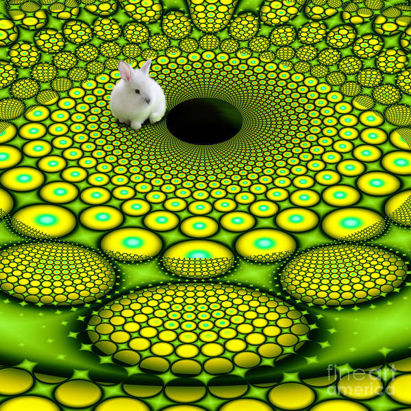 Digital Art - Follow The White Rabbit by Mariella Wassing