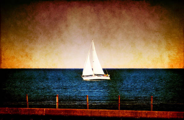 Photograph - Follow The Wind by Milena Ilieva