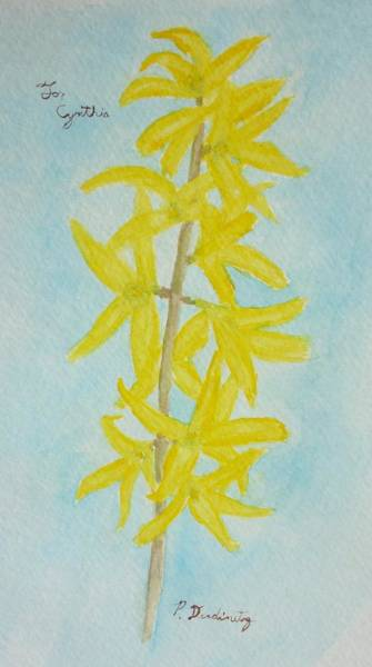 Forsythia Painting - For Cynthia by Patty Dopkin