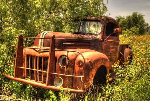 Wrecking Yard Photograph - Ford In The Weeds by Beth Gates-Sully