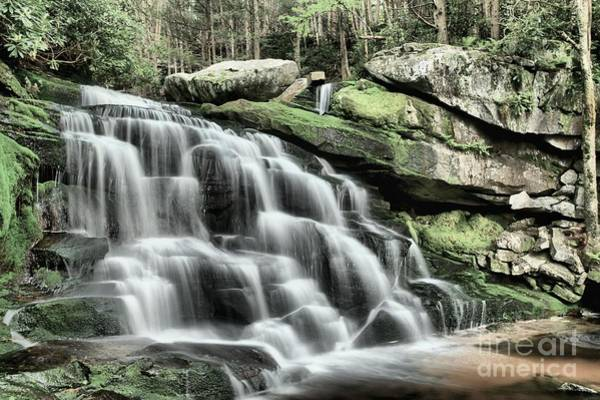 Photograph - Forest Cascade by Adam Jewell