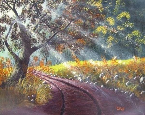 Painting - Forest Sunbeams by Lorraine Bradford