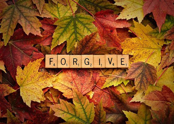 Photograph - Forgive-autumn by  Onyonet  Photo Studios