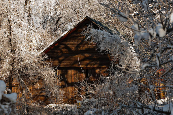 Photograph - Forsty Corn Crib by Edward Peterson