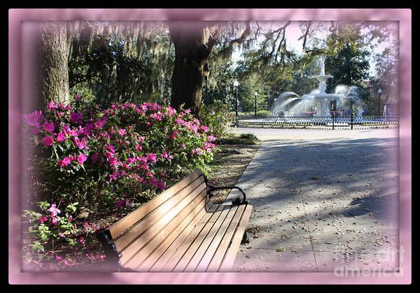Forsyth Park Photograph - Forsyth Park In Spring Pink by Carol Groenen