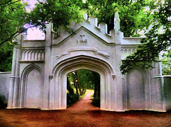 Hs Photograph - Fort Canning Park by Steve Taylor