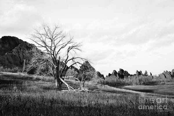 Photograph - Fountain Valley In Black And White by Cheryl McClure