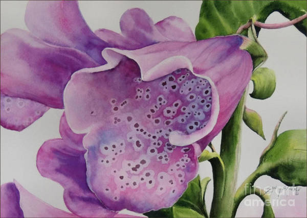 Painting - Foxgloves  by Sandy Brindle