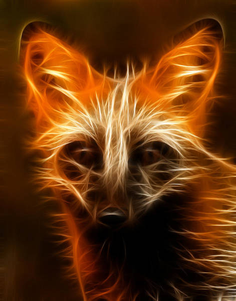 Reynard Wall Art - Photograph - Fractal Fox by Wade Aiken