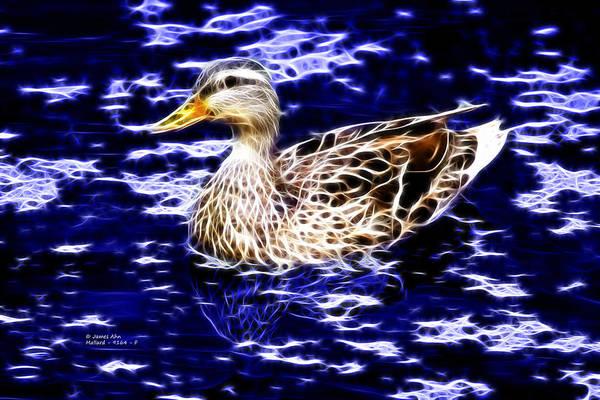 Fractal - Mallard In Pond- 9164 Art Print