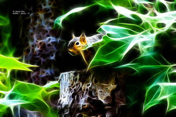 Fractal - Peek A Boo II - Robbie The Squirrel - 8242 Art Print