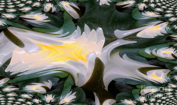 Digital Art - Fractal Transform Of Flower by Stanley Morganstein
