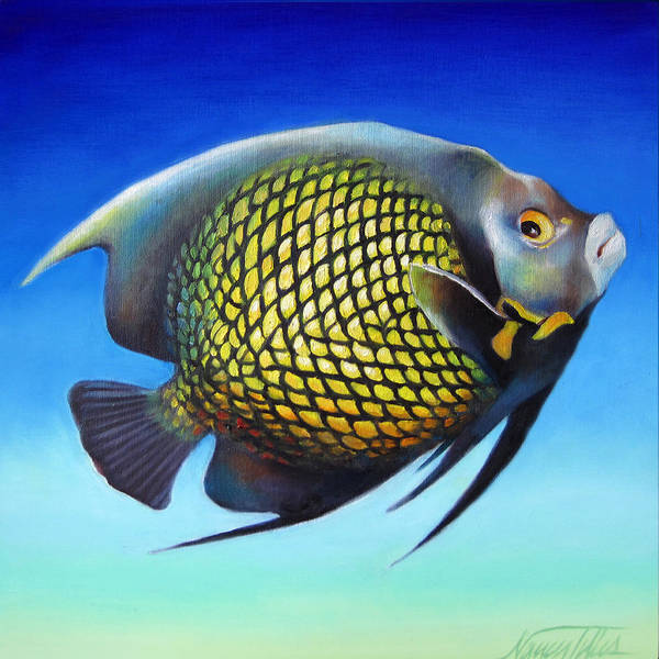 Wall Art - Painting - French Angelfish With Attitude by Nancy Tilles