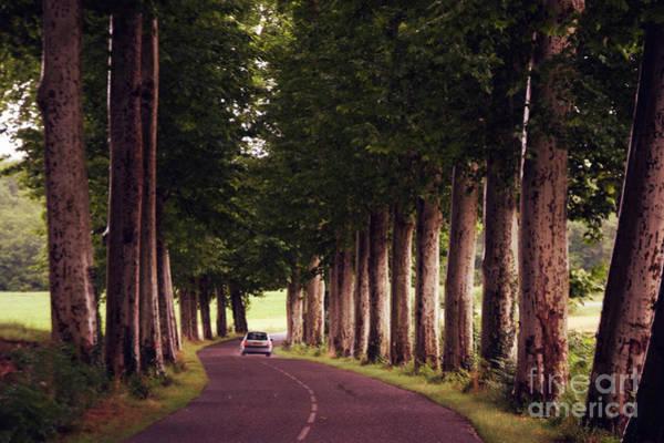 Wall Art - Photograph - French Country Road by Wedigo Ferchland