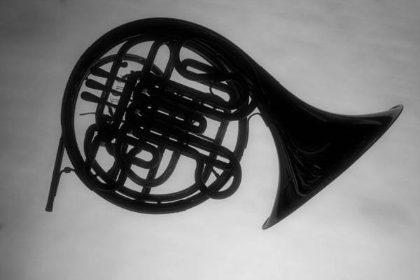 Photograph - French Horn Silhouette by M K Miller