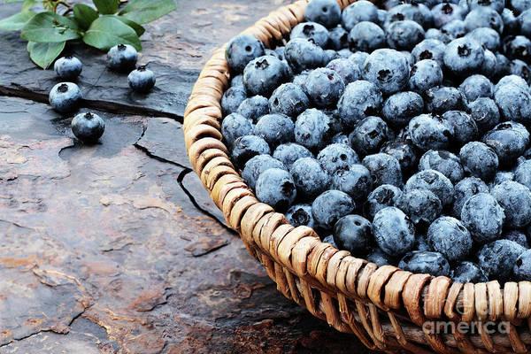 Bilberry Photograph - Fresh Blueberries by Stephanie Frey