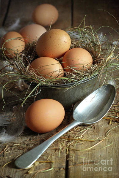 Wall Art - Photograph - Fresh Brown Eggs In Old Tin Container With Spoon  by Sandra Cunningham