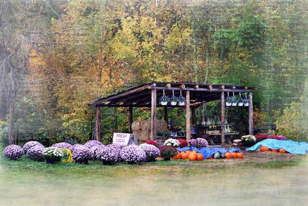 Rockbridge County Photograph - Fresh Local Produce by Kathy Jennings