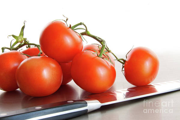 Wall Art - Photograph - Fresh Ripe Tomatoes On Stainless Steel Counter by Sandra Cunningham