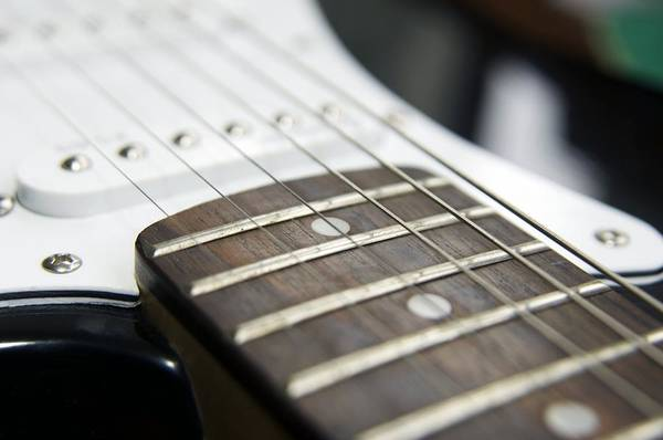 Fret Board Photograph - Frets On An Electric Guitar by Johnny Greig