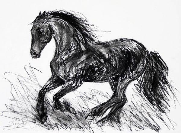 Friesian Drawing - Friesian Stallion Four by Carol Engles