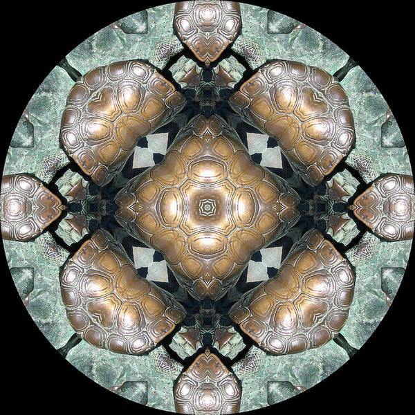 Wall Art - Digital Art - Frog Mandala 4 by Pam Blackstone
