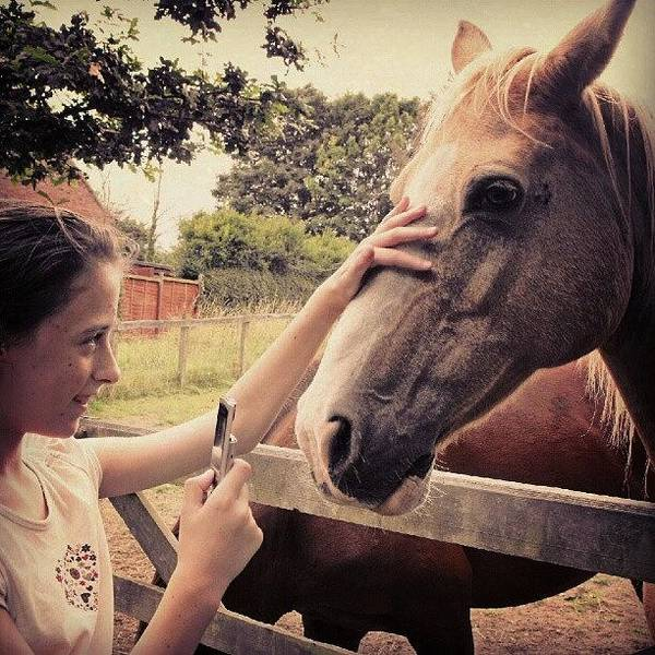 Norfolk Photograph - From Saturday.... #girl #horse #horses by Alexandra Cook