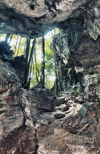 Liane Photograph - From The Cave by MotHaiBaPhoto Prints