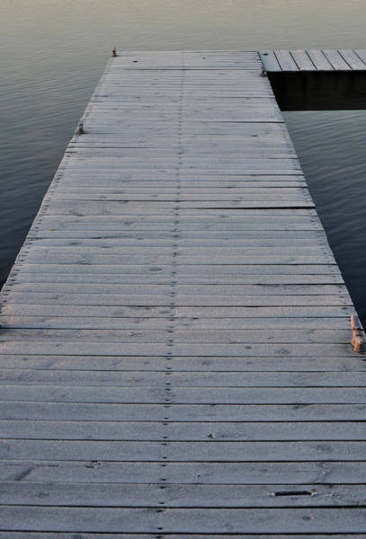 Photograph - Frosted Dock by Tim Nyberg