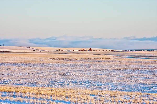 Photograph - Frosty Morning 2 by Albert Seger