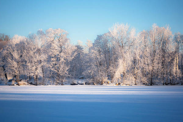 Photograph - Frosty Morning by Robert Clifford