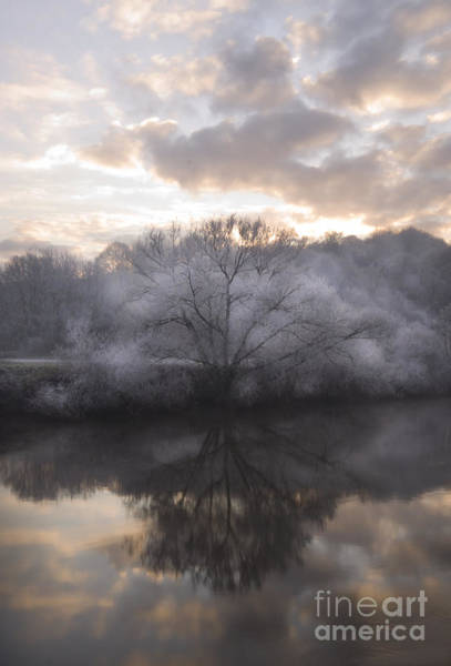 Wall Art - Photograph - Frosty River by Angel Ciesniarska