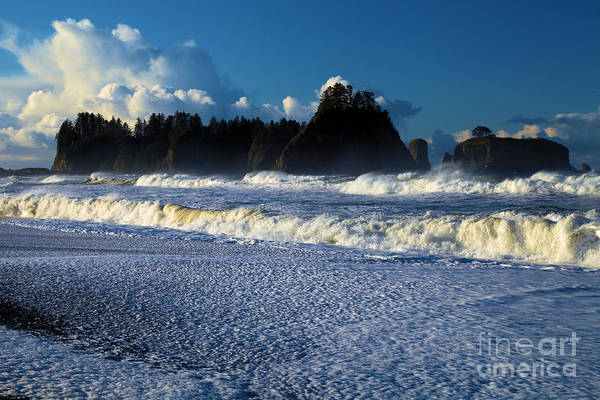 Photograph - Frothy Waves At Olympic by Adam Jewell