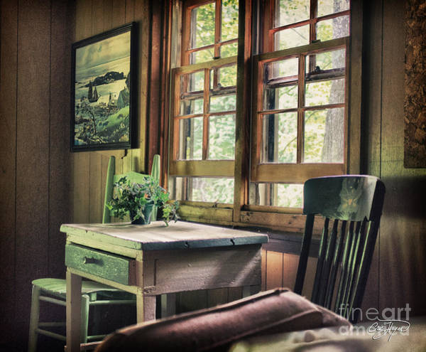 Little Things Photograph - Frozen In Time by Cris Hayes