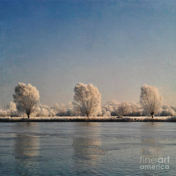 Wall Art - Photograph - Frozen Lake by Lyn Randle