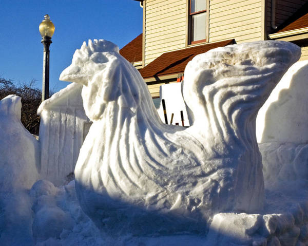 Frankenmuth Photograph - Frozen Snow Chicken by LeeAnn McLaneGoetz McLaneGoetzStudioLLCcom