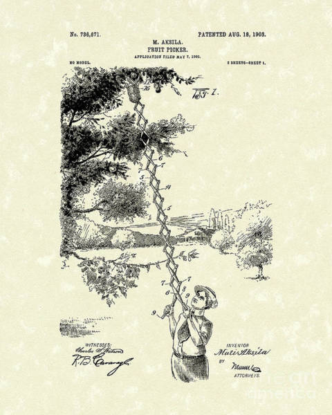 Pickers Wall Art - Drawing - Fruit Picker 1903 Patent Art by Prior Art Design