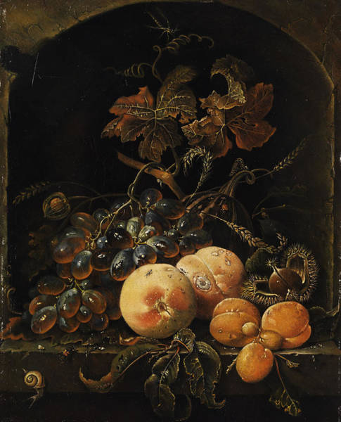 Wall Art - Painting - Fruit Still Life by Flemish Painter