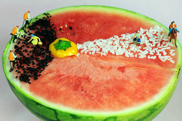 Water-melon Wall Art - Photograph - Fruits Depicting Kepler's Law by Paul Ge