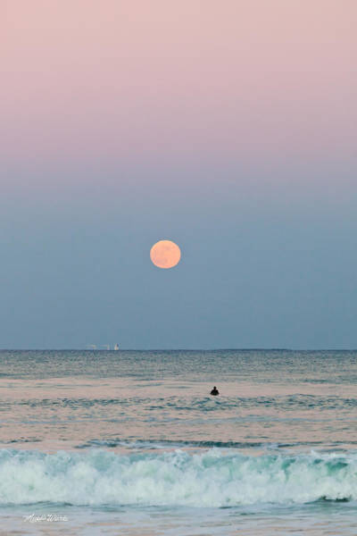 Photograph - Full Moon In Taurus October 29 2012 by Michelle Constantine
