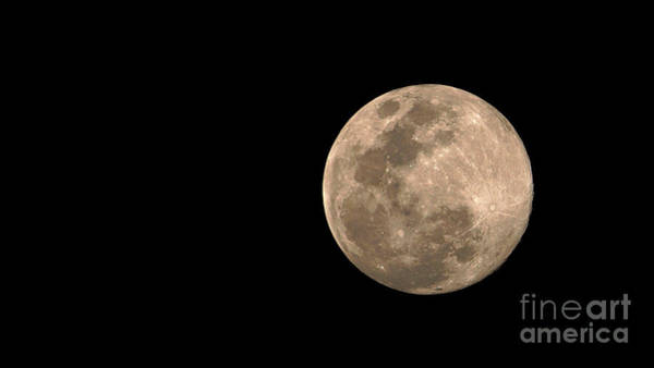 Photograph - Full Moon by Mareko Marciniak