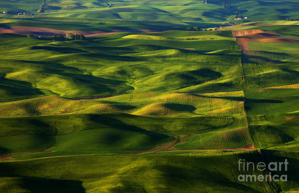 Palouse Photograph - Furrows And Folds by Mike  Dawson