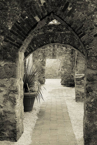 Photograph - Garden Arch At Mission San Jose by Sarah Broadmeadow-Thomas