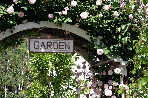 Photograph - Garden Arch by Cliff Wassmann
